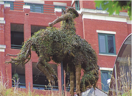 Bucking Horse Topiary, Reata Rooftop, 2005
