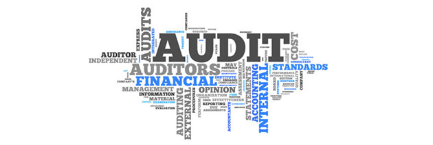 Internal Audit Auditor logo
