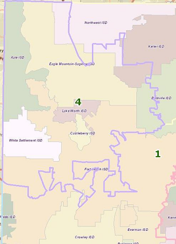 School Districts in Precinct 4