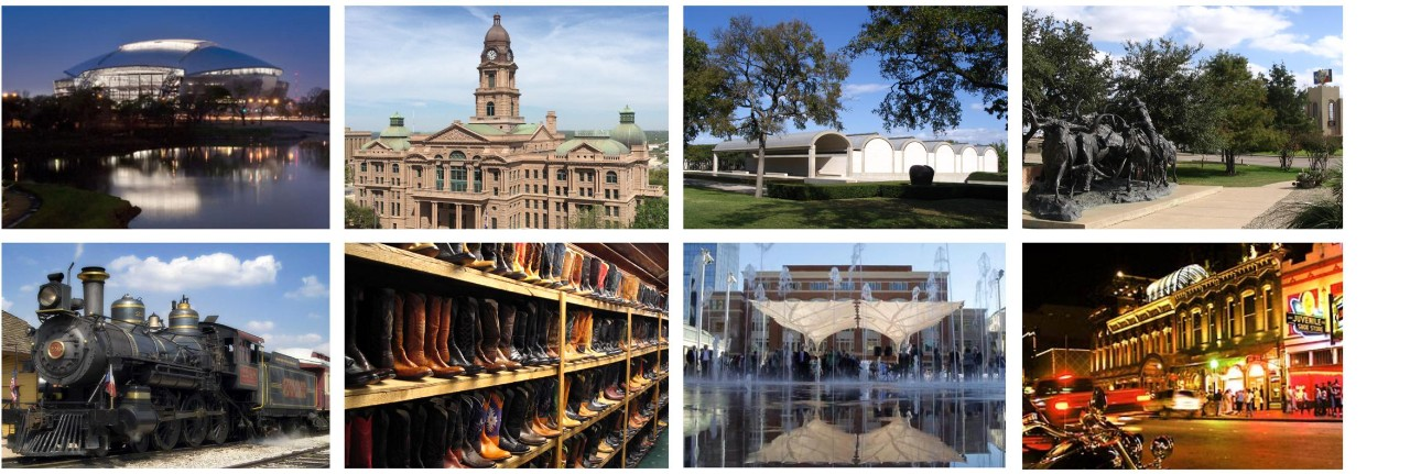 A Variety of Images representing Tarrant County